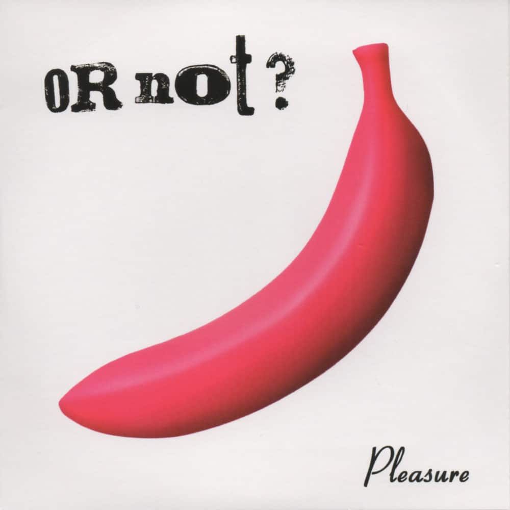 OR NOT - Pleasure EP Job done: Mastered