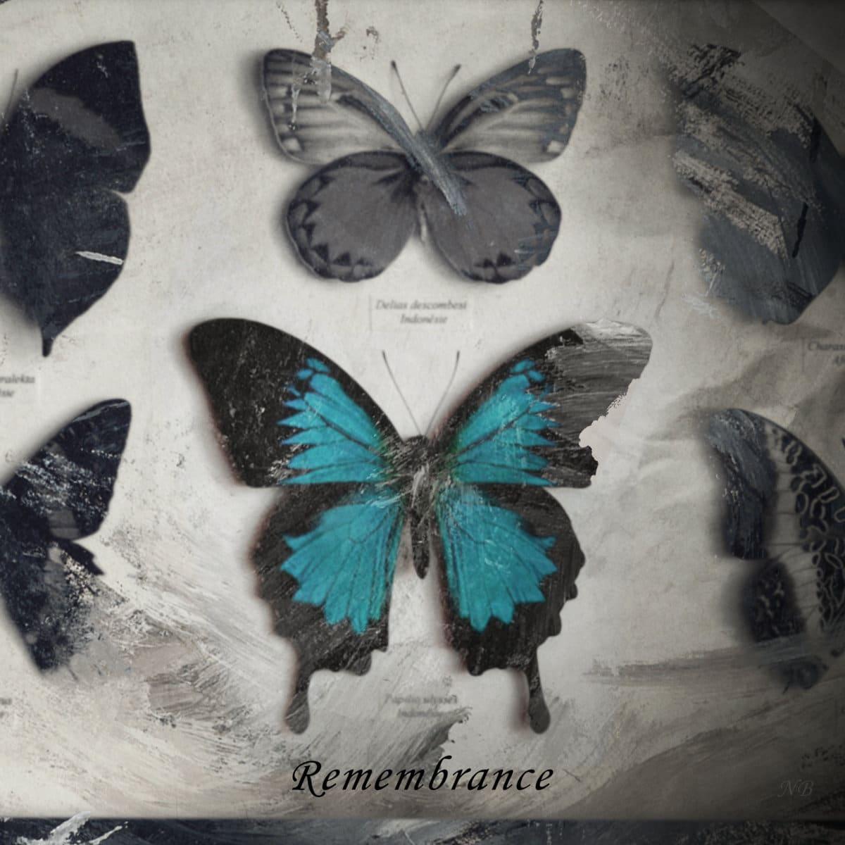 Nicolas Bredin - Remembrance